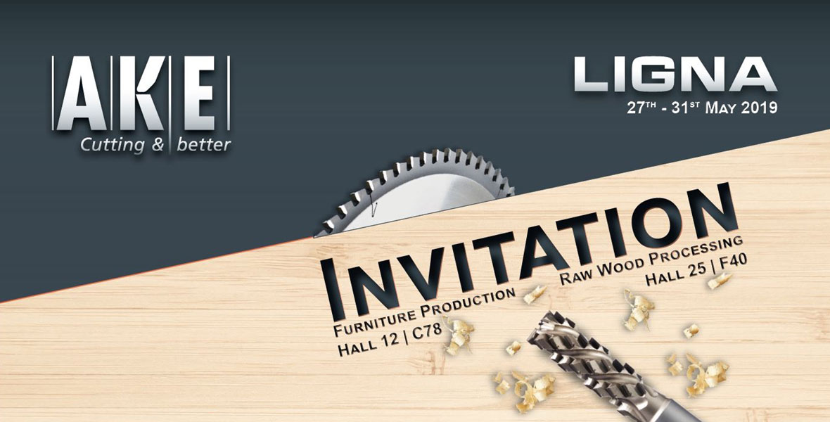 Join Salestech at the 2019 Ligna exhibition